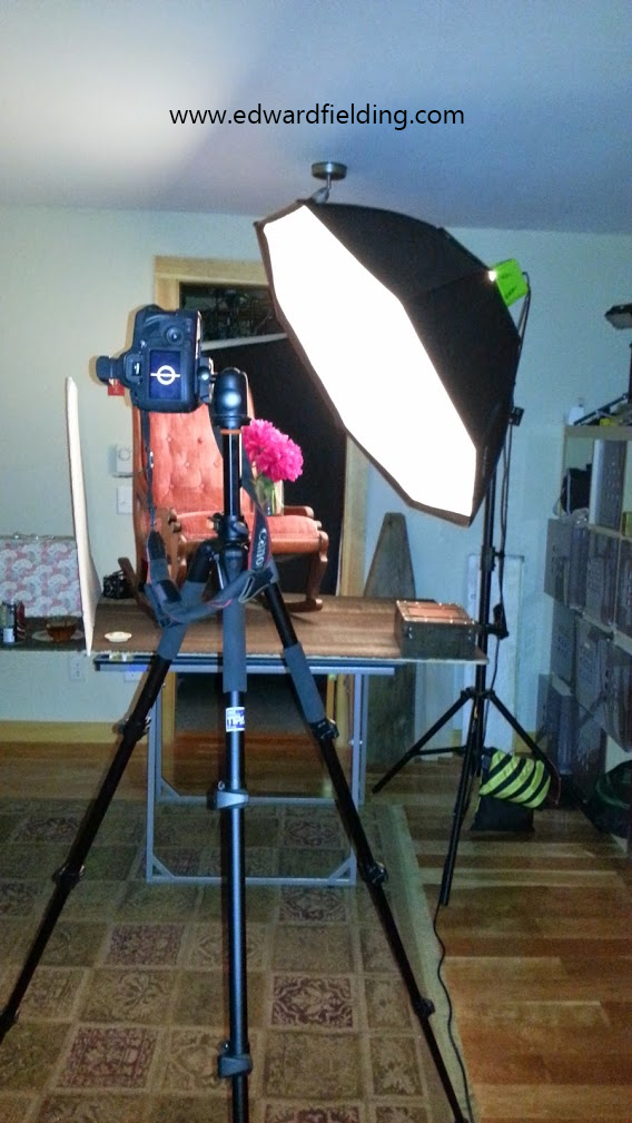 Professional Photography Studio