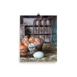 Farm Fresh Eggs Poster Print