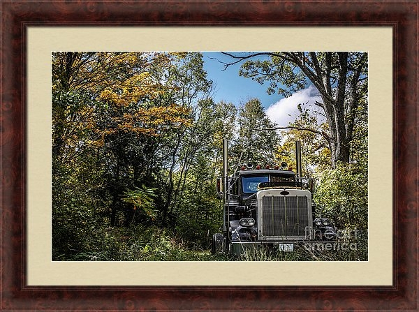 Off Road Trucker by Edward M. Fielding