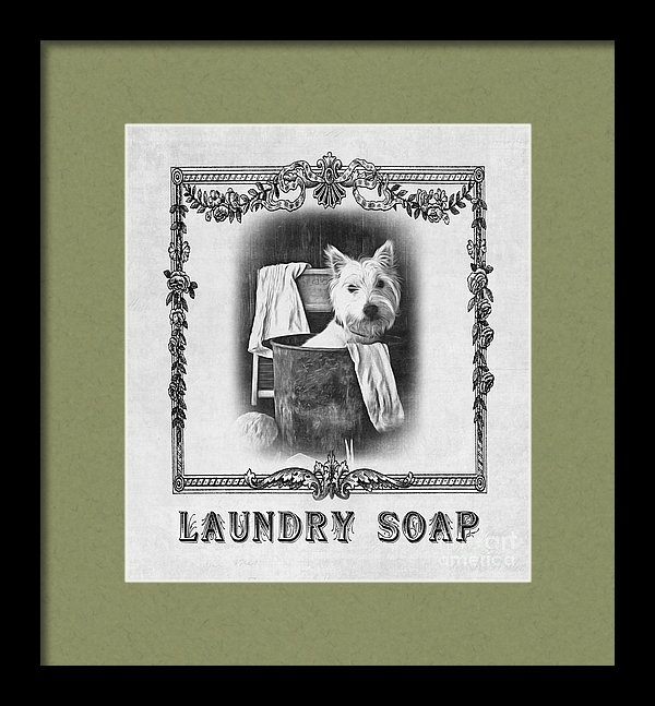 Dirty Dog Laundry Soap