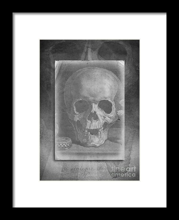 Skull - part of the visual poetry series.