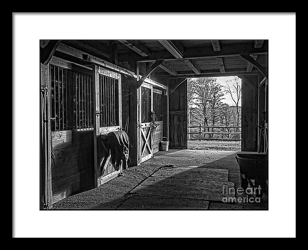 Inside The Horse Barn Black And White