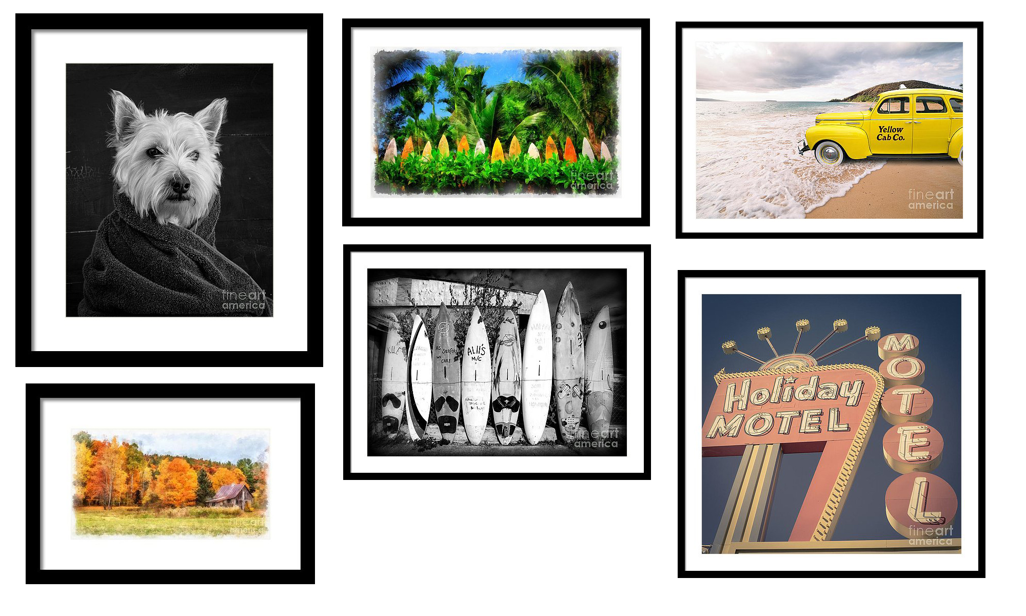 Buy Prints and Products