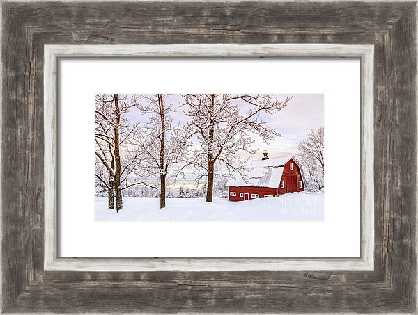 Winter Arrives - Barn wood frame