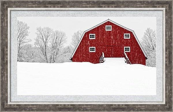 Blizzard at the red dairy barn.