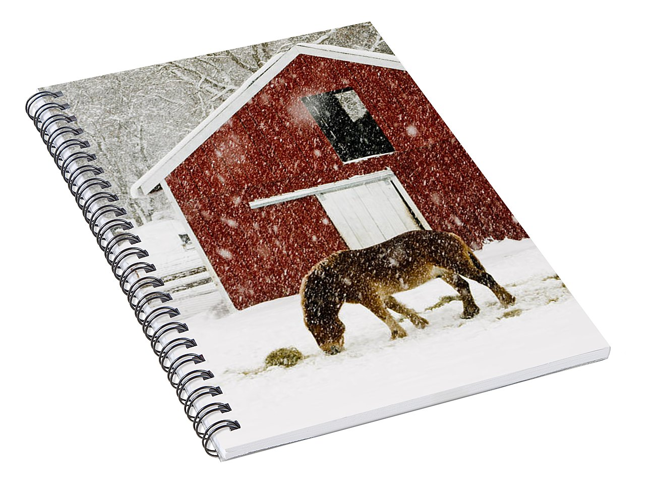 New! Spiral notebooks featuring scenes of Vermont